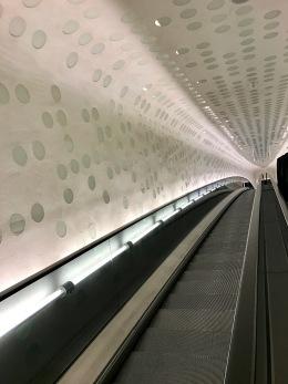 Elbphilarmonie: Tube