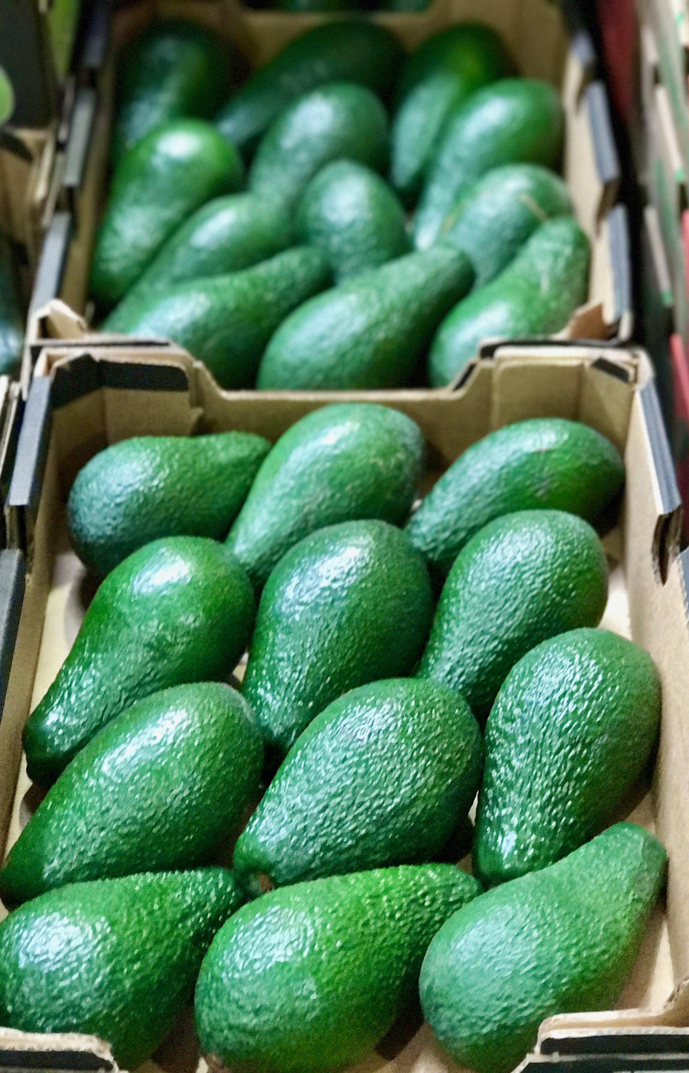 Melonen auf Großmarkt