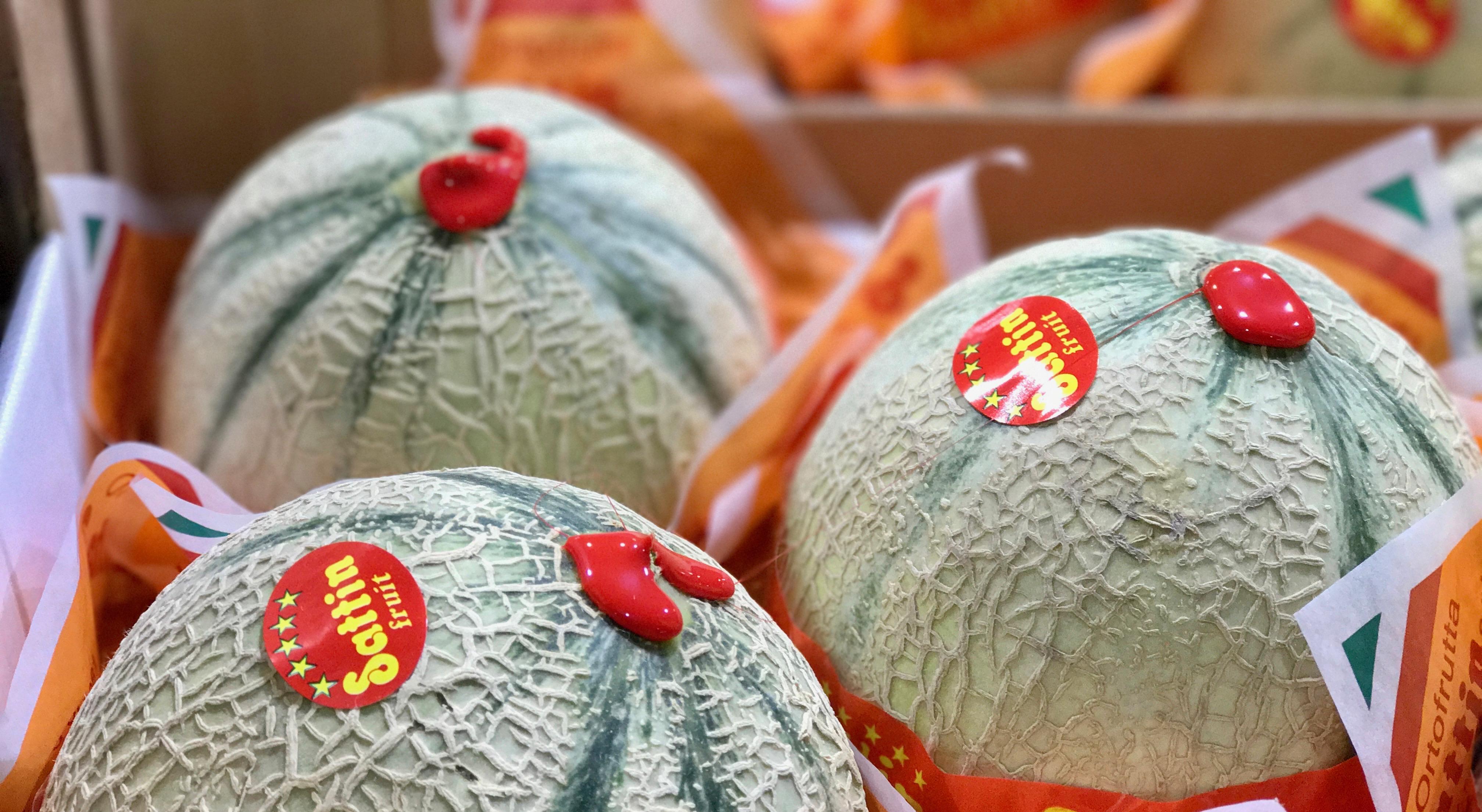 Melone auf Großmarkt